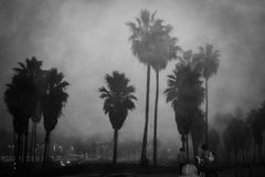 Venice Beach in fog Stock Images
