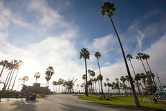 Venice Beach Stock Photos