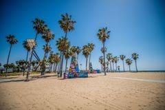Venice beach palms Stock Photo