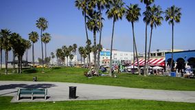 Venice Beach stock video footage