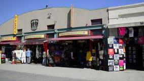 Venice Beach stock video