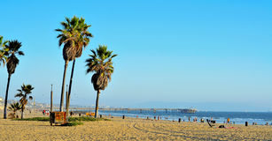 Venice Beach, Venice, United States. VENICE, US - OCTOBER 17: View of Venice Beach with its Pier in the background on October 17, 2011 in Venice, US. Dozen of royalty free stock images