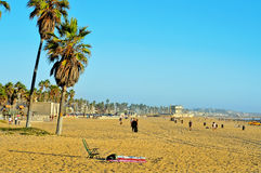 Venice Beach, Venice, United States Royalty Free Stock Photography