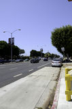Venice Boulevard Royalty Free Stock Photography