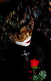 Venice carnival 2. Venice beuty and her rose Stock Photography