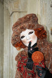 Venice carnival 2011 - mask Stock Photography
