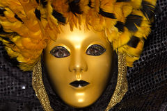 Venice Carnival 2013 Royalty Free Stock Photography