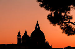 Venice cathedral dome silhouette at sunset. Amazing burning sky. Venice cathedral dome and tree silhouette at sunset. Amazing burning sky stock photography