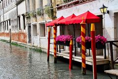 Venice Flowers Royalty Free Stock Photo