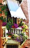 Venice Flowers. One of the many balconies in Venice overflowing with flowers in the late summer heat Stock Image