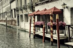 Venice Flowers with a Vintage Look Royalty Free Stock Photography