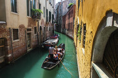 Venice. And gondolas, Grand Canal and palaces, summer Royalty Free Stock Photography
