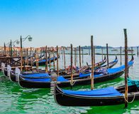 Venice gondolas on a water in a row. Summer, Italy stock images