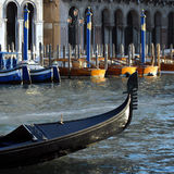 Venice - Grand Canal. A Gondola's on the Grand Canal, near the Rialto Bridge, with water Taxis shining in the evening sun Stock Images