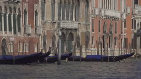 Venice Grand Canal with gondolas and historic buildings stock video
