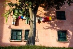 Venice Hanging Laundry Italy summer. Tree windows Stock Photo