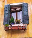 Traditional window with flowers in venice street, royalty free stock photo