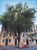 Venice, Italy - July 14th, 2017: An elderly couple, a muzhina and a woman sit relax on a red bench under a large beautiful tree in. Venice, Italy - July 14th Stock Photography