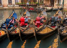 Venice, Italy - October 13, 2017: Gondoliers rest in their gondolas. The gondoliers joke and laugh. Royalty Free Stock Images