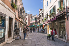 Venice in Italy royalty free stock images