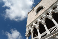 Venice, Italy. Venice palace and a sea gull flying in the sky Royalty Free Stock Image