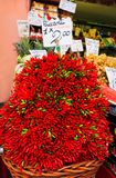 Venice, Italy - September 2016. Bunch of red hot chili pepper on the Rialto market.Tablets with price of peppers stock image