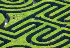 Hedge Maze from above. VENICE, ITALY - SEPTEMBER 22, 2017: Hedge Maze from above Venice Italy Stock Photo
