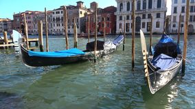 Two gondolas moored on the Grand canal, close-up. Venice stock footage