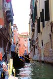 Venice, Italy. Tourist, tourism, old, architecture, city, house, window, brick, theater, window, women, wood, gondola, gondolier, oar, canal, water, plants Stock Image