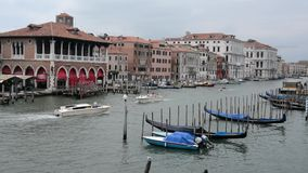 Venice in Italy, Venezia video. Grand Canal, boats and floating gondolas parked, splendid view, Venice, Italy stock video