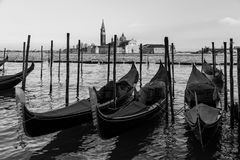 Free Venice Lagoon Royalty Free Stock Images - 37411089
