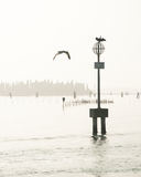 Venice Lagoon and Birds on Post in Water Stock Photo
