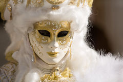 Venice Mask. Mask at the Venice Carnival 2014 Stock Photography