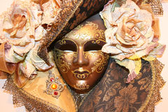 Free Venice Mask Royalty Free Stock Images - 7413119