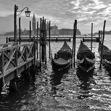 Venice: Passion Gondolas Stock Images