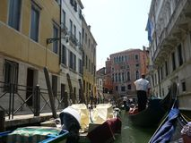 Venice-the pearl of the Adriatic stock photography