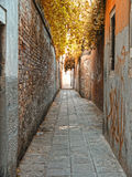 Venice roads Royalty Free Stock Images