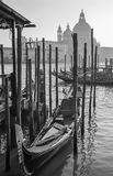 Venice - Santa Maria della Salute church and gondolas Royalty Free Stock Photography