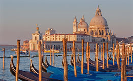 Venice - Santa Maria della Salute church and gondolas in morning Stock Photos