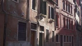 Venice silent back street birds crossing stock footage
