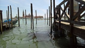 Venice in spring. royalty free stock image