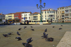 Venice sqaure Royalty Free Stock Photos