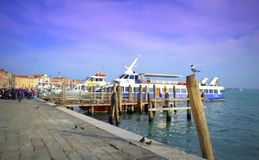 Venice tourist boats port,Italy Royalty Free Stock Photography