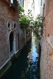 Venice and trees Stock Photos