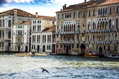 Venice Venezia Italy Stock Photography