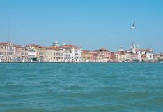 Venice from water Royalty Free Stock Image