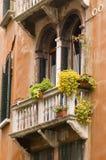 Venice window Royalty Free Stock Image