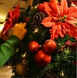 Venir de Noël Images libres de droits