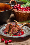 Venison with cranberry sauce and rosemary royalty free stock images