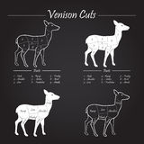 Venison meat cut diagram scheme - blackboard Stock Images